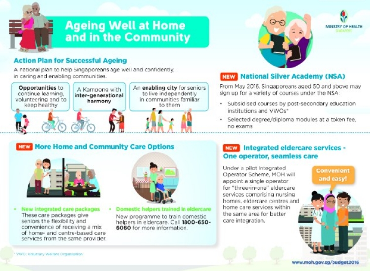Ageing Well at Home and in the Community